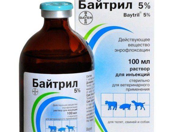 5% giải pháp Baytril