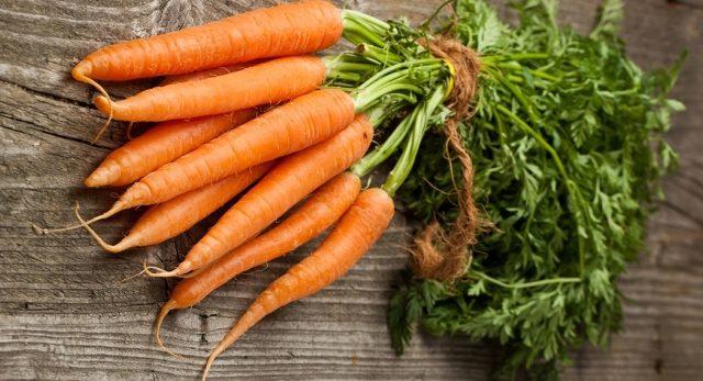 trồng cà rốt bằng phương pháp kizima